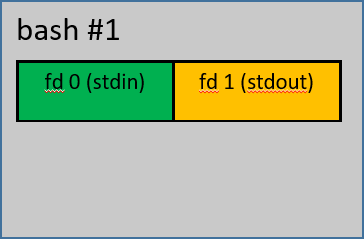 Diagram showing a single bash process #1 with two fd, 0 for standard out, and 1 for standard input